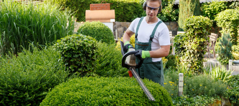 5 Landscape Maintenance Services You Don't Want to Skip Out On