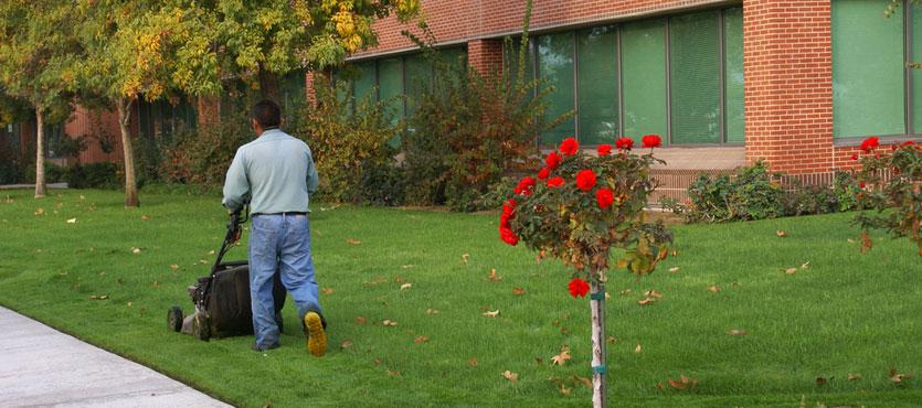 The Value of Commercial Landscape Maintenance